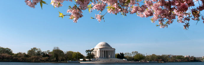 photo of Washington D.C., DC