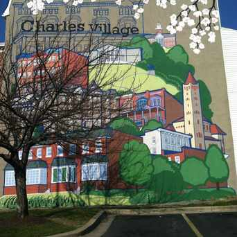 Photo of Charles Village in Charles Village, Baltimore