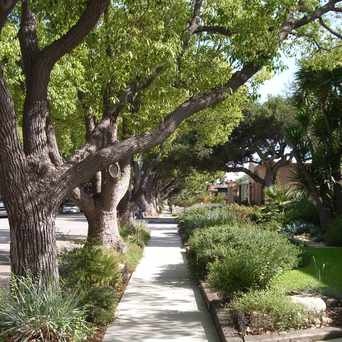 Photo of Cal Heights Street Scene in California Heights, Long Beach