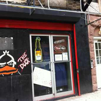 Photo of The Duck in East Harlem, New York