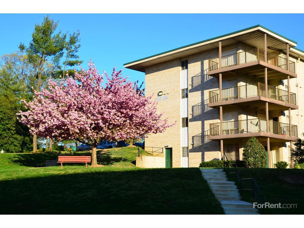 Oak Hill Apartments White Oak MD Walk Score