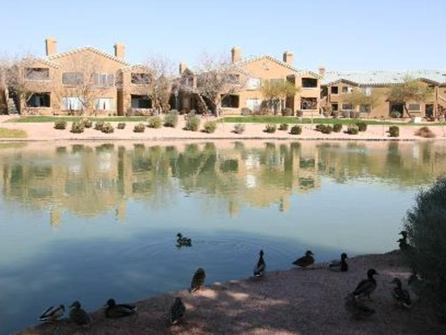 Lakeview at Superstition Springs Apartments photo #1