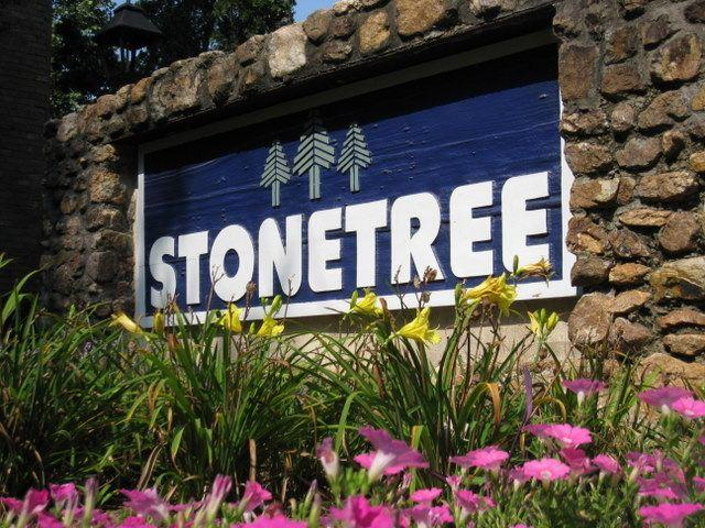 Stonetree Apartments photo #1