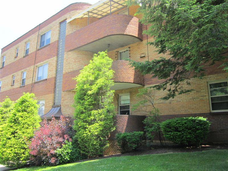 Squirrel Hill Apartment Apartments Pittsburgh Pa Walk Score