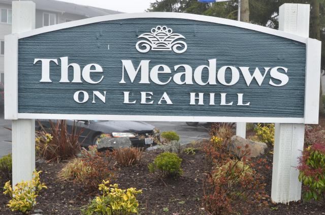 Meadows on Lea Hill Apartments photo #1