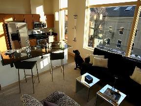 Modern Loft Studio Apartment- Available Now! Apartments photo #1