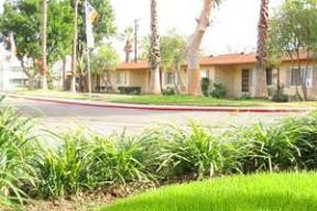 The Casitas Apartments photo #1