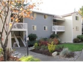 2000 Lake Washington Apartments photo #1