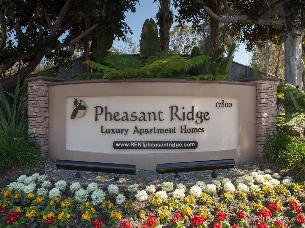 Pheasant Ridge Apartments photo #1