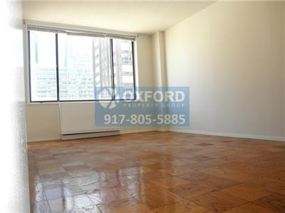 One Spacious BR In New York photo #1