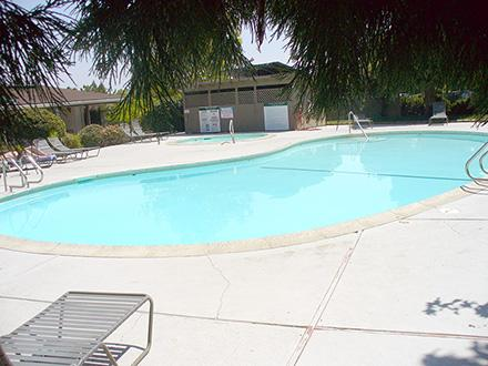 Shasta Villa Apartments - One BR photo #1