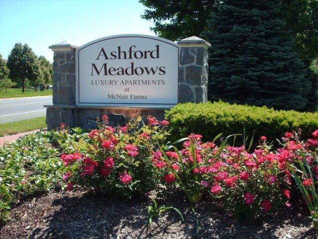 Ashford Meadows Apartments photo #1