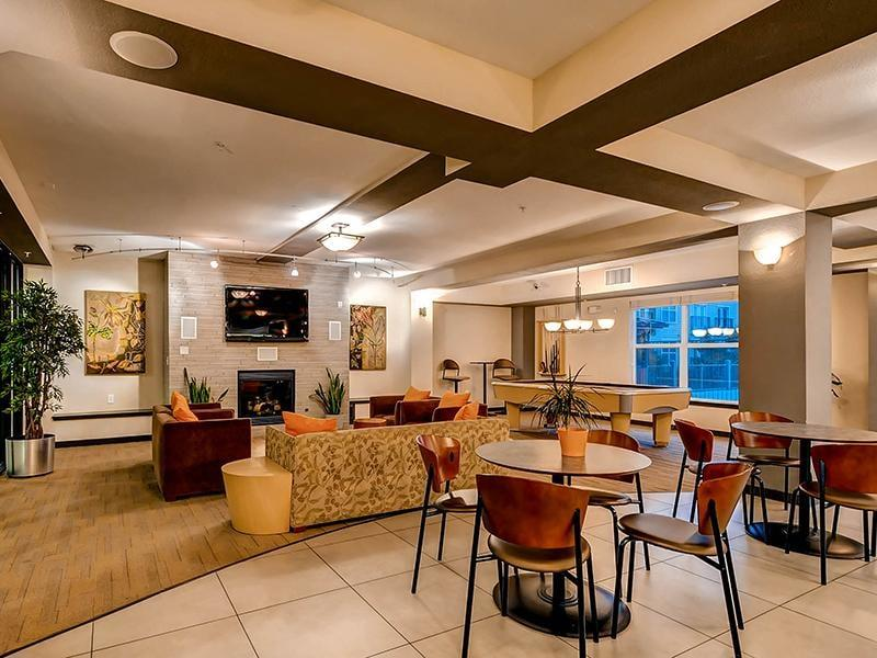 Apartments For Rent In Loveland Co Pet Friendly