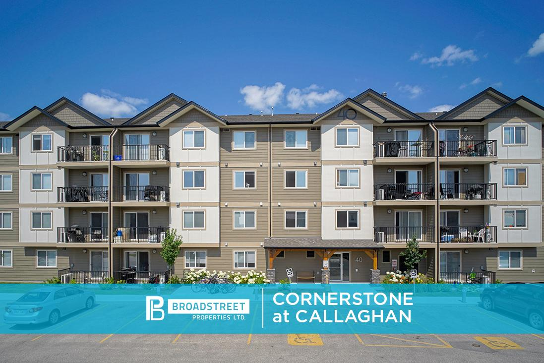 Cornerstone at Callaghan Apartments photo #1