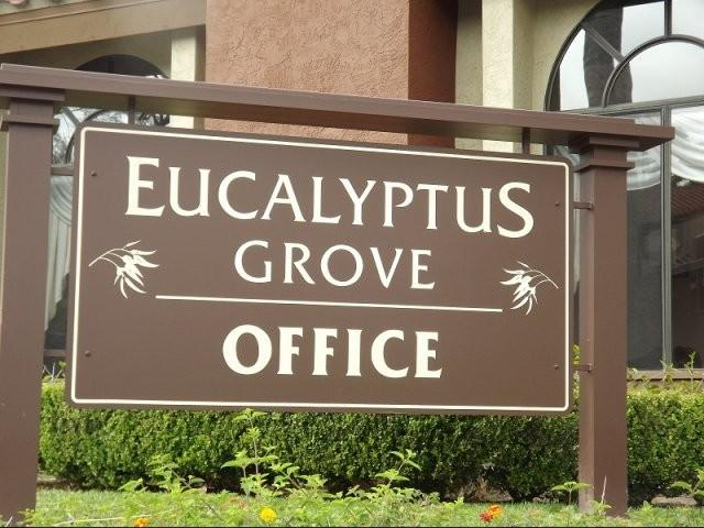Eucalyptus Grove Apartments photo #1