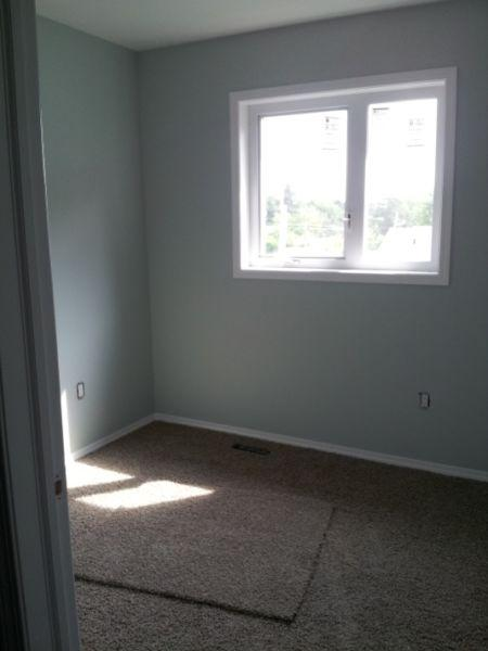 Great Townhouse SK Side - 4813 45 Street has a Walk Score of 80 out of 100