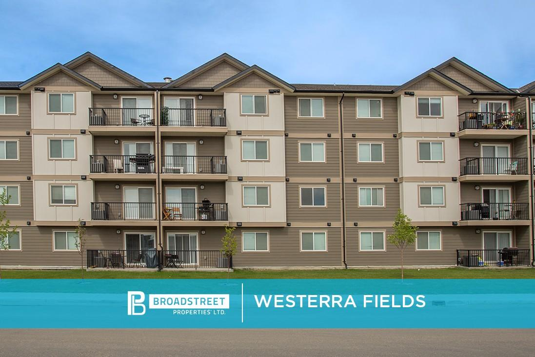Westerra Fields Apartments photo #1