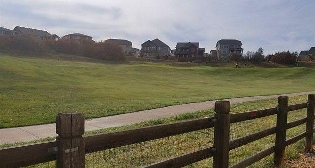 1412 Royal Troon Dr photo #1