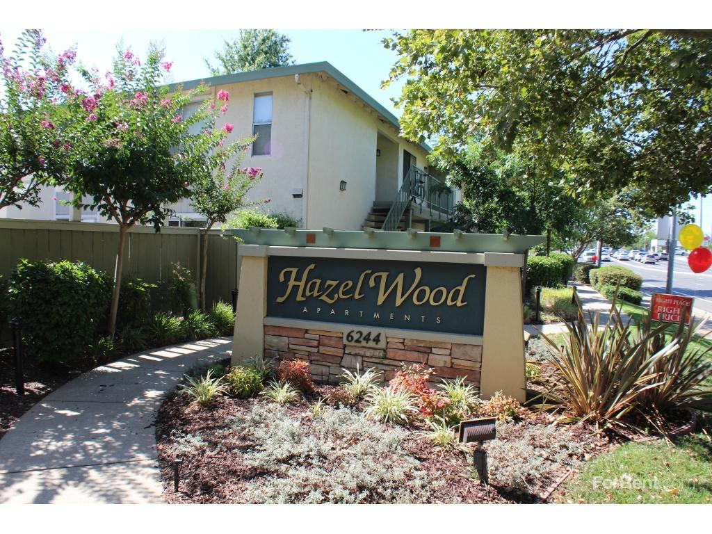 Hazel Wood Apartments photo #1