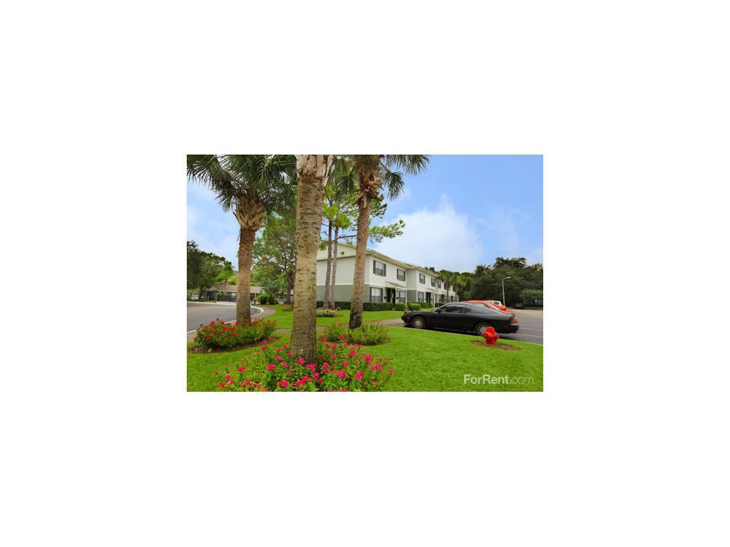 Windsor Manor Apartments Tampa Fl
