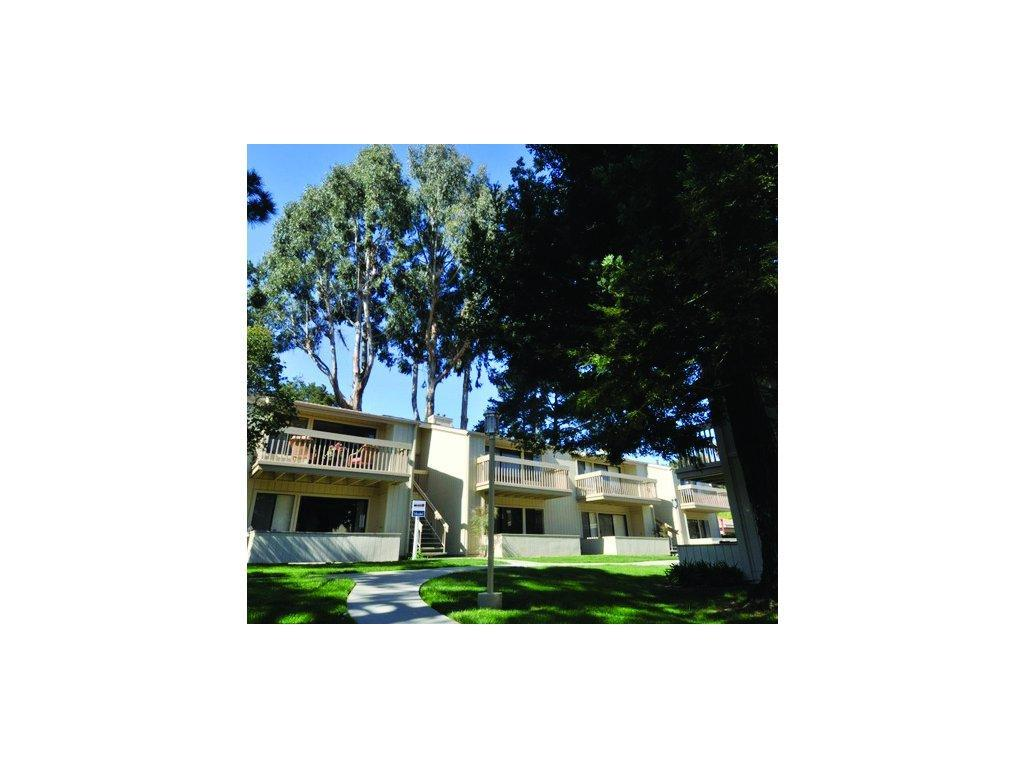 Apartments For Rent In Monterey Bay Ca