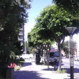 Photo of East Village