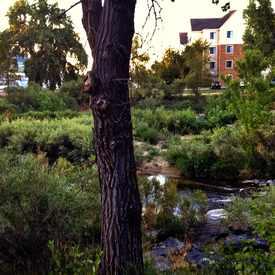 Photo of Cherry Creek Trail