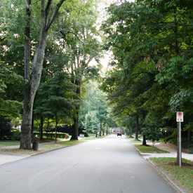 Photo of Myers Park Tree Lined Street
