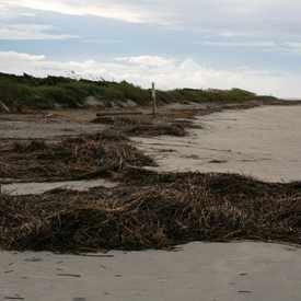 Photo of Sullivan's Island