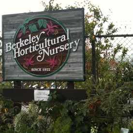 Photo of Berkeley Horticultural Nursery, McGee Avenue, Berkeley, CA