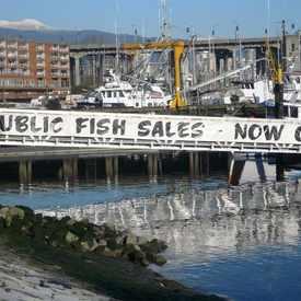 Photo of Fisherman's Wharf, Vancouver, BC