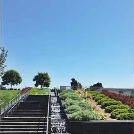 Photo of Virginia Museum of Fine Arts Sculpture Garden