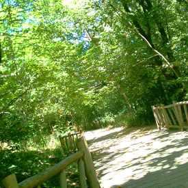 Photo of Cherokee Park