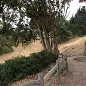 Photo of Billy Goat Hill Park