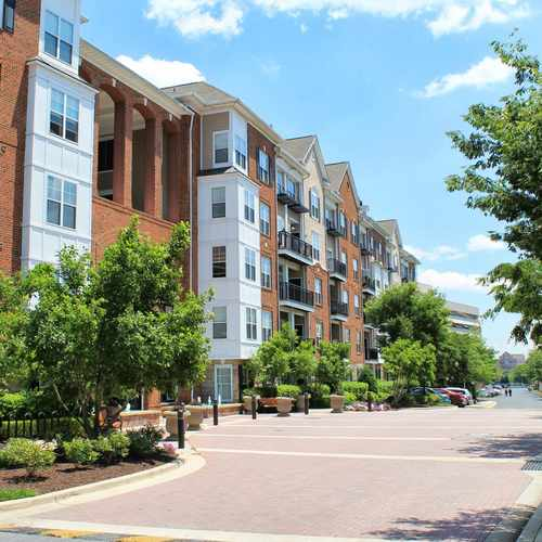 501 Hungerford Drive Apartment 447, Rockville MD
