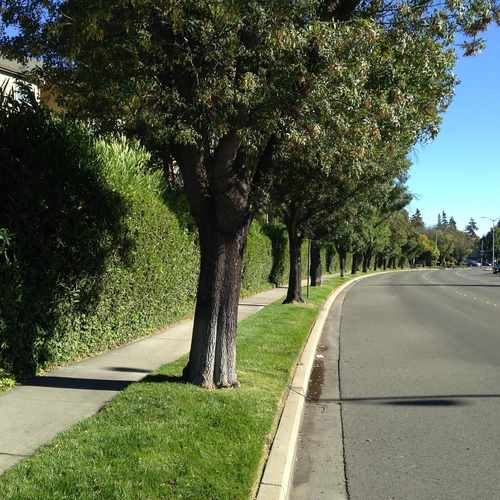 photo of Stevenson Blvd:Leslie St at 39939 Stevenson Common Fremont CA 94538