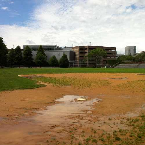 photo of WM E Carter Baseball Fields at 650 Columbus Avenue Boston MA 02118