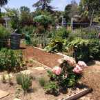 Photo of Vera House Community Garden in Adams North, San Diego