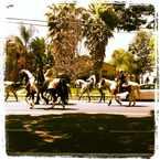 Photo of Burbank Rancho Neighborhood in Burbank