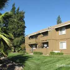 Rental info for Canyon Terrace Apartments