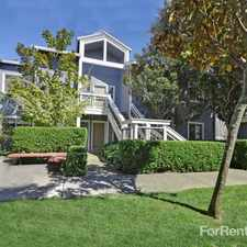 Rental info for Larkspur Courts