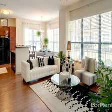 Rental info for Palazzo at Cypresswood in the Houston area