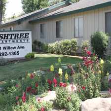 Rental info for Ashtree Apartments