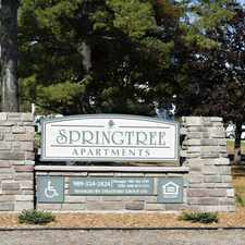Rental info for Springtree Apartments