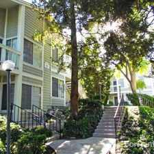 Rental info for Harborview Apartments