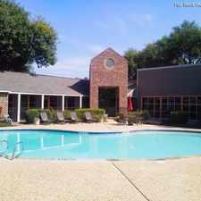 Rental info for Vida in the Austin area