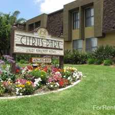 Rental info for Citrus Park Apartment Homes