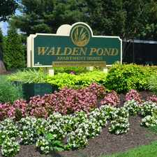 Rental info for Walden Pond in the Lynchburg area