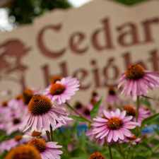 Rental info for Cedar Heights