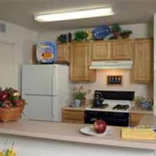 Rental info for 4 bedrooms 3 full baths split floor plan with large closets and large pantry